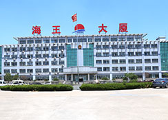Shandong Haiwang Chemical Co.,Ltd.