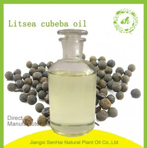 Wholesale high quality litsea  essential oils with cheap price for skin care
