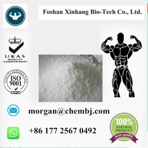 Testosterone Enanthate steroid raw powder best supplier