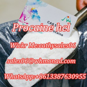 Procaine HCL Local Anesthetic Procaine Pain Reliever in STOCK 51-05-8